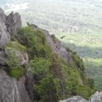 Grandfather_Mountain