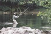 Fly Fishing in Blue Ridge Mountains